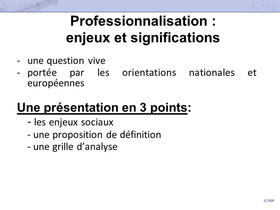 © CIEP Professionnalisation : enjeux et significations -une question vive -portée par les orientations nationales et européennes Une présentation en 3