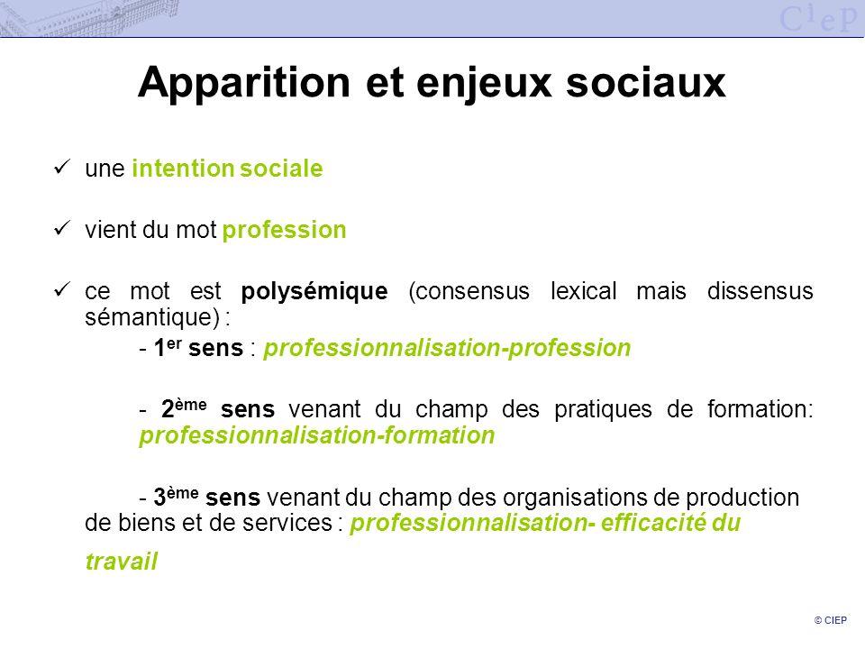© CIEP Apparition et enjeux sociaux une intention sociale vient du mot profession ce mot est polysémique (consensus lexical mais dissensus sémantique)