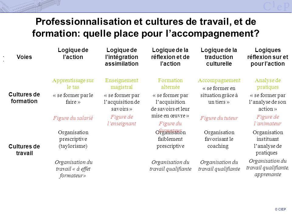 © CIEP Professionnalisation et cultures de travail, et de formation: quelle place pour laccompagnement?... Organisation instituant lanalyse de pratiqu