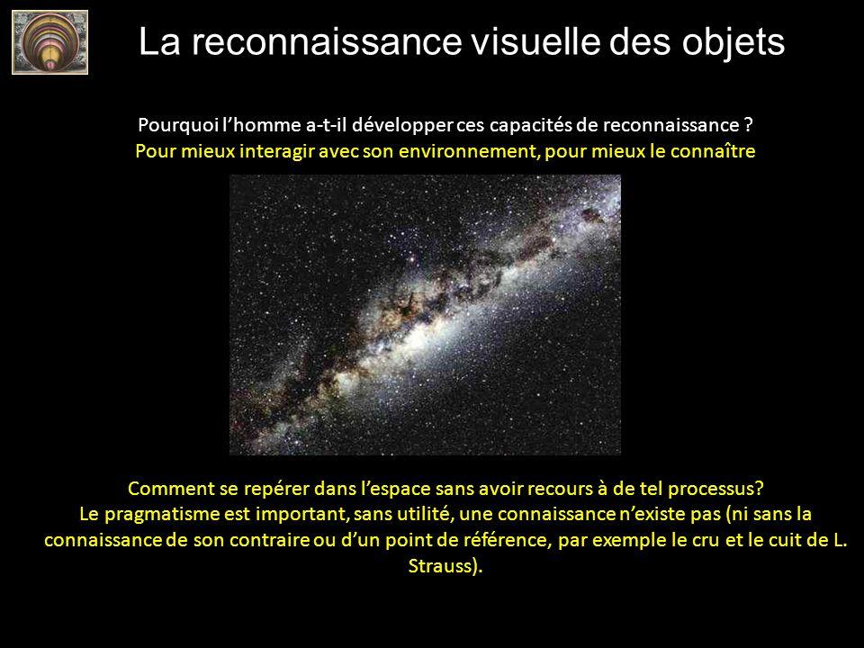 La reconnaissance visuelle des objets Pourquoi lhomme a-t-il développer ces capacités de reconnaissance ? Pour mieux interagir avec son environnement,