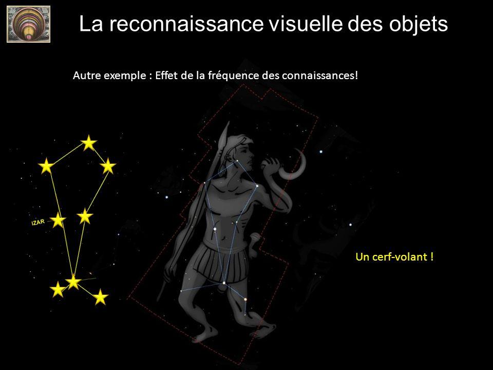 La reconnaissance visuelle des objets Autre exemple : Effet de la fréquence des connaissances! Un cerf-volant !