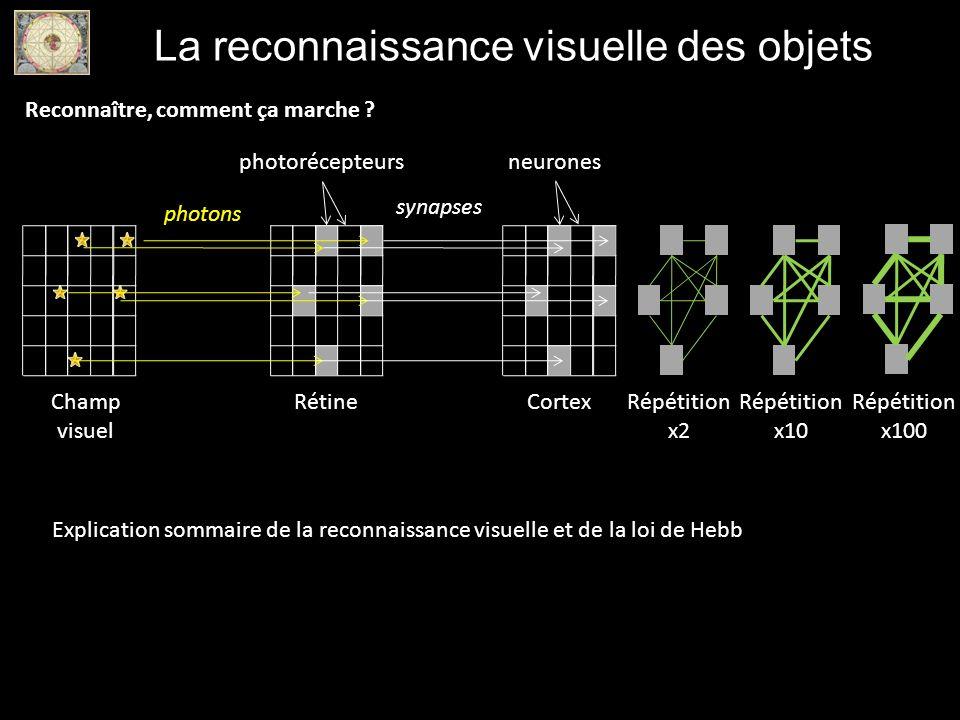 La reconnaissance visuelle des objets photons RétineChamp visuel Cortex synapses Répétition x2 Répétition x10 Répétition x100 Explication sommaire de