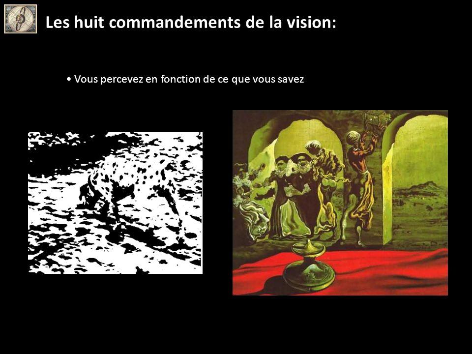 Vous percevez en fonction de ce que vous savez Les huit commandements de la vision: