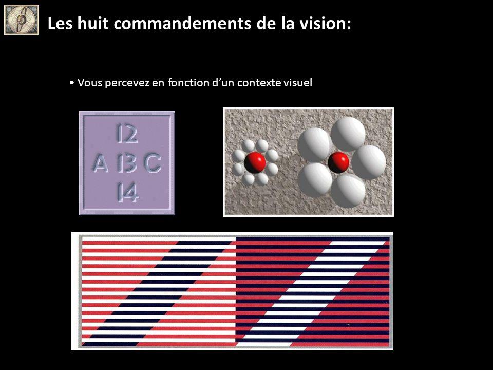 Vous percevez en fonction dun contexte visuel Les huit commandements de la vision: