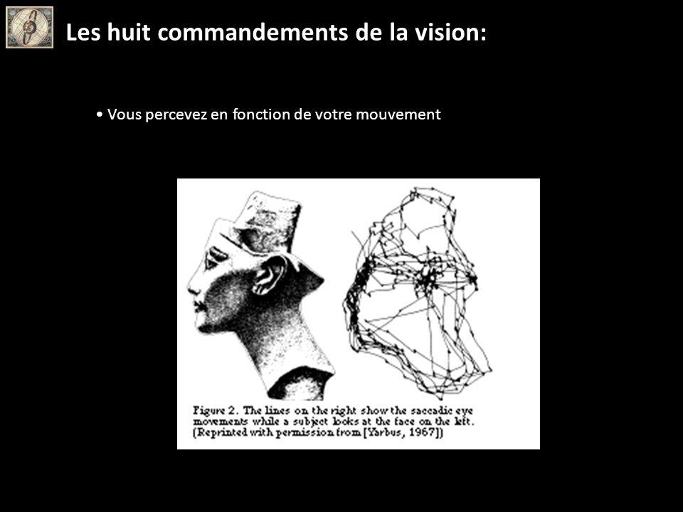 Vous percevez en fonction de votre mouvement Les huit commandements de la vision: