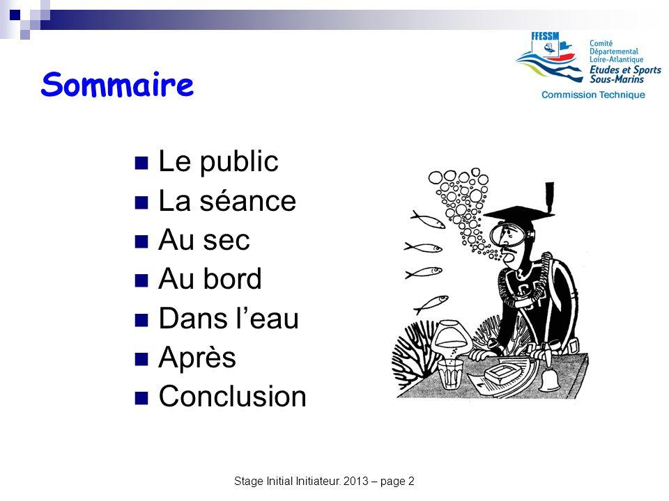 Stage Initial Initiateur. 2013 – page 2 Sommaire Le public La séance Au sec Au bord Dans leau Après Conclusion