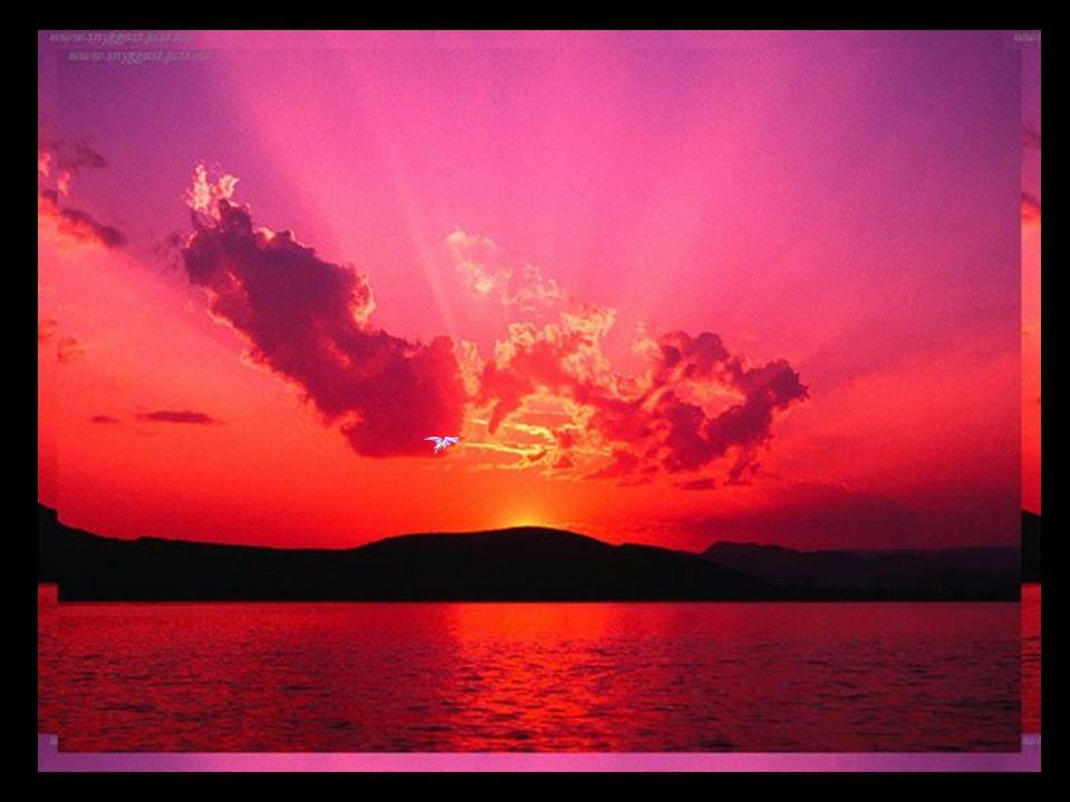 Moi qui admire le soleil couchant… Je sens toujours mon cœur si aimant… Il se bat comme les vagues de locéan… Il vit sans cesse à contre-courant… Même au-delà de ces mers outragées… Faut-il indéfiniment peiner pour se retrouver…