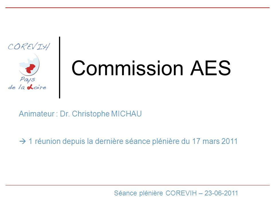 Commission AES Séance plénière COREVIH – 23-06-2011 Animateur : Dr.