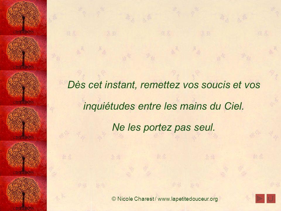 © Nicole Charest / www.lapetitedouceur.org Déposez votre fardeau Vous transportez vos soucis sur vos épaules; ce fardeau vous alourdit et vous empêche de ressentir la paix et dêtre heureux.