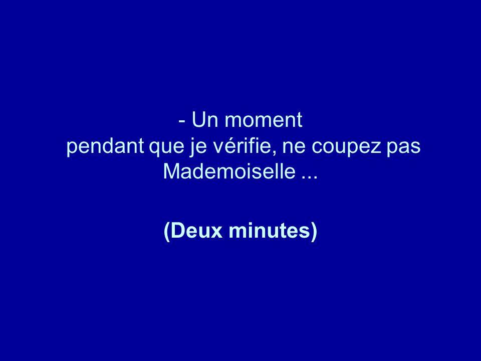 Diaporamas-a-la-con.com - Un moment pendant que je vérifie, ne coupez pas Mademoiselle... (Deux minutes)