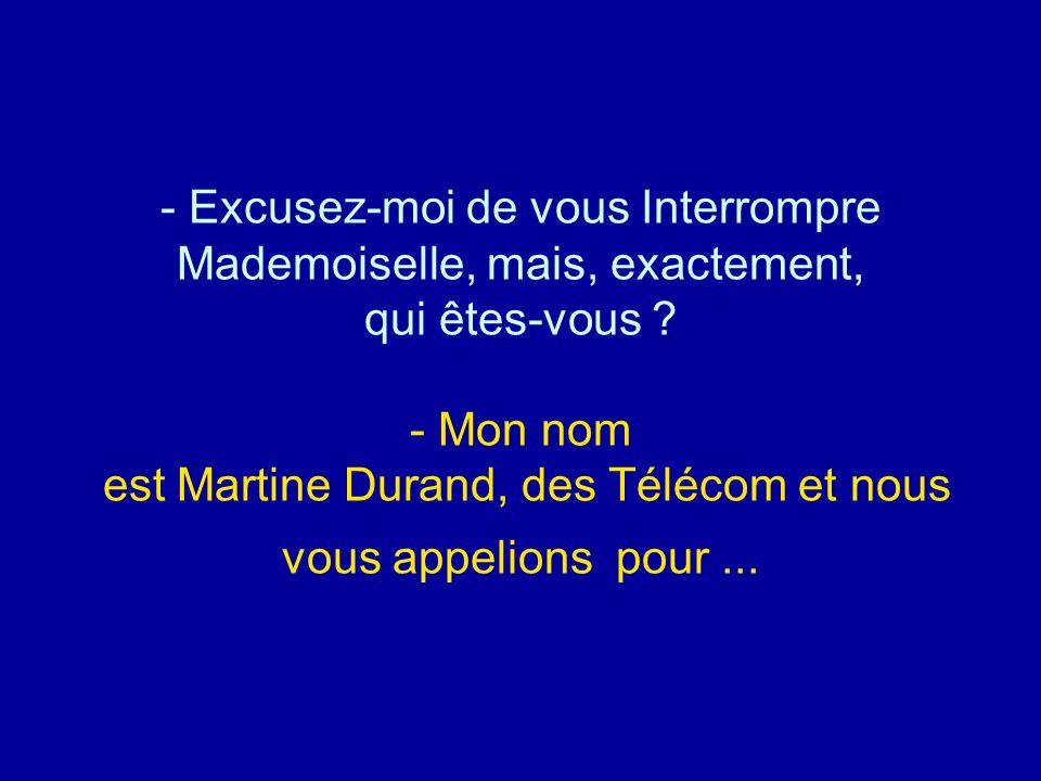 Diaporamas-a-la-con.com - Excusez-moi de vous Interrompre Mademoiselle, mais, exactement, qui êtes-vous ? - Mon nom est Martine Durand, des Télécom et