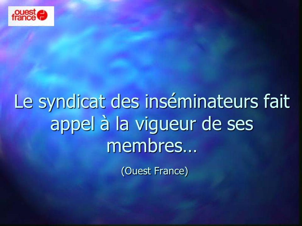 Le syndicat des inséminateurs fait appel à la vigueur de ses membres… (Ouest France)