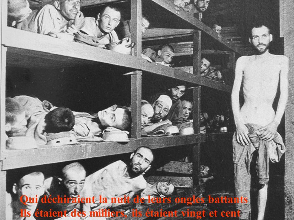 Ils étaient vingt et cent, ils étaient des milliers Nus et maigres, tremblants, dans ces wagons plombés