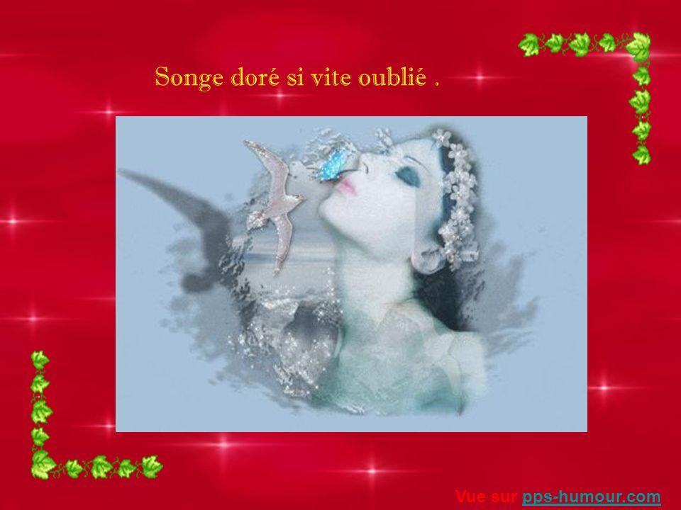 Doux souvenirs de chose dispensés Vue sur pps-humour.compps-humour.com
