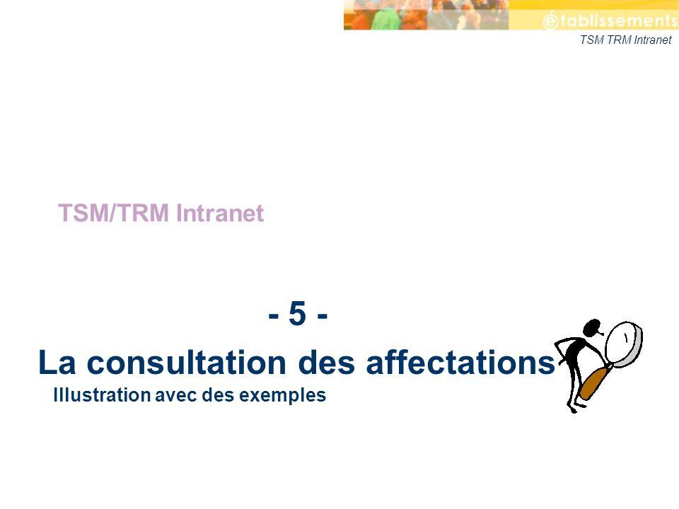 TSM TRM Intranet - 5 - La consultation des affectations TSM/TRM Intranet Illustration avec des exemples