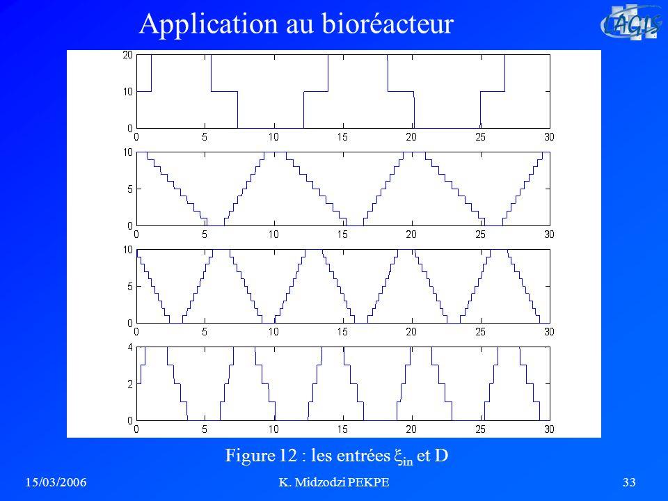 15/03/2006K. Midzodzi PEKPE33 Figure 12 : les entrées in et D Application au bioréacteur