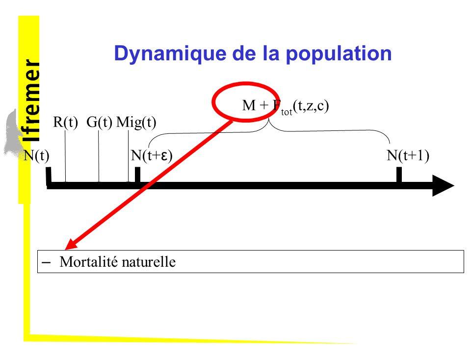 Dynamique de la population N(t) – Mortalité naturelle R(t)G(t)Mig(t) N(t+ ε ) N(t+1) M + F tot (t,z,c)