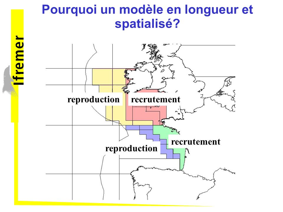 Pourquoi un modèle en longueur et spatialisé? recrutement reproduction ? ? ? Problème de migration
