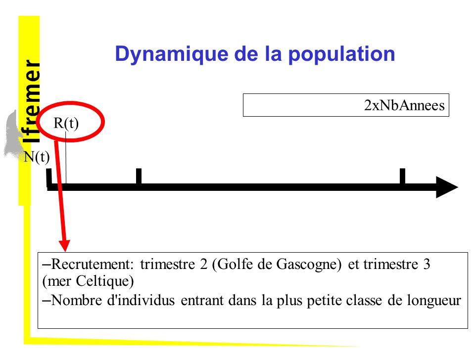 Dynamique de la population N(t) – Recrutement: trimestre 2 (Golfe de Gascogne) et trimestre 3 (mer Celtique) – Nombre d individus entrant dans la plus petite classe de longueur R(t) 2xNbAnnees