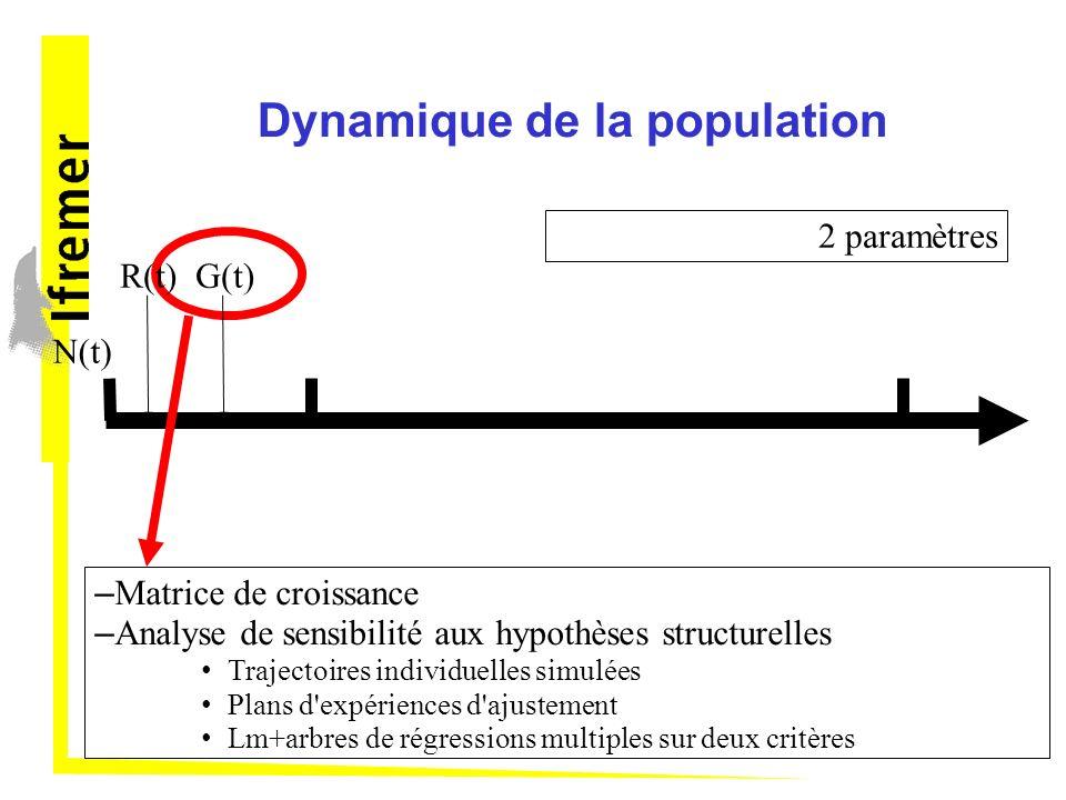 Dynamique de la population N(t) – Matrice de croissance – Analyse de sensibilité aux hypothèses structurelles Trajectoires individuelles simulées Plans d expériences d ajustement Lm+arbres de régressions multiples sur deux critères R(t)G(t) 2 paramètres