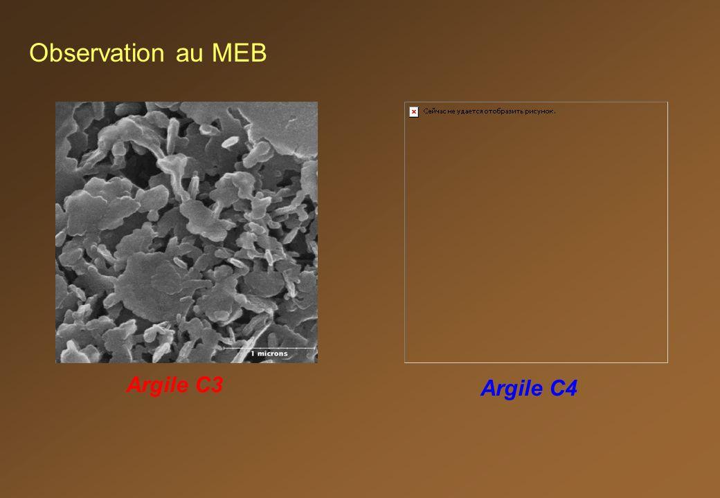 Argile C3 Argile C4 Observation au MEB