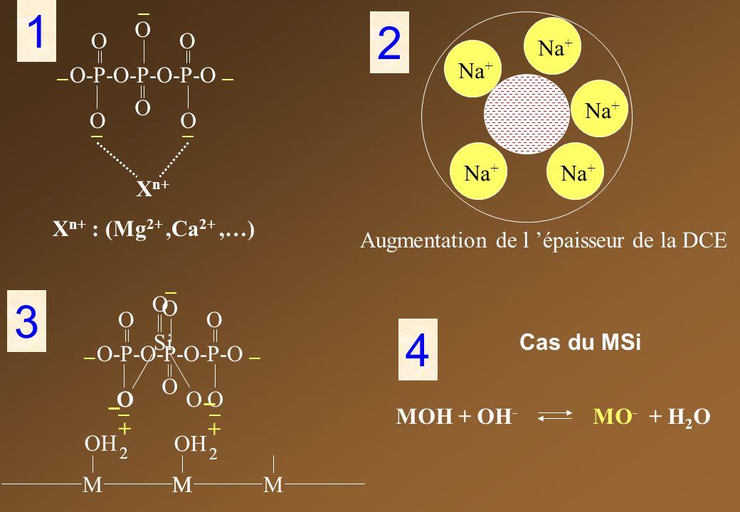 X n+ : (Mg 2+,Ca 2+,…) O-P-O-P-O-P-O O O O OO O X n+ 1 O-P-O-P-O-P-O O O O OO O MMMM OH 2 + 2 + 3 Na + 2 Augmentation de l épaisseur de la DCE Si O OO 4 Cas du MSi MOH + OH - MO - + H 2 O