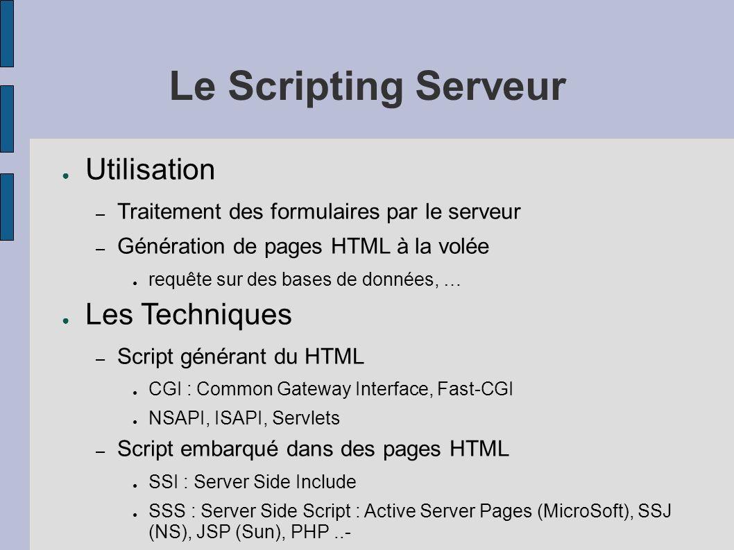Le Scripting Serveur Utilisation – Traitement des formulaires par le serveur – Génération de pages HTML à la volée requête sur des bases de données, … Les Techniques – Script générant du HTML CGI : Common Gateway Interface, Fast-CGI NSAPI, ISAPI, Servlets – Script embarqué dans des pages HTML SSI : Server Side Include SSS : Server Side Script : Active Server Pages (MicroSoft), SSJ (NS), JSP (Sun), PHP..-