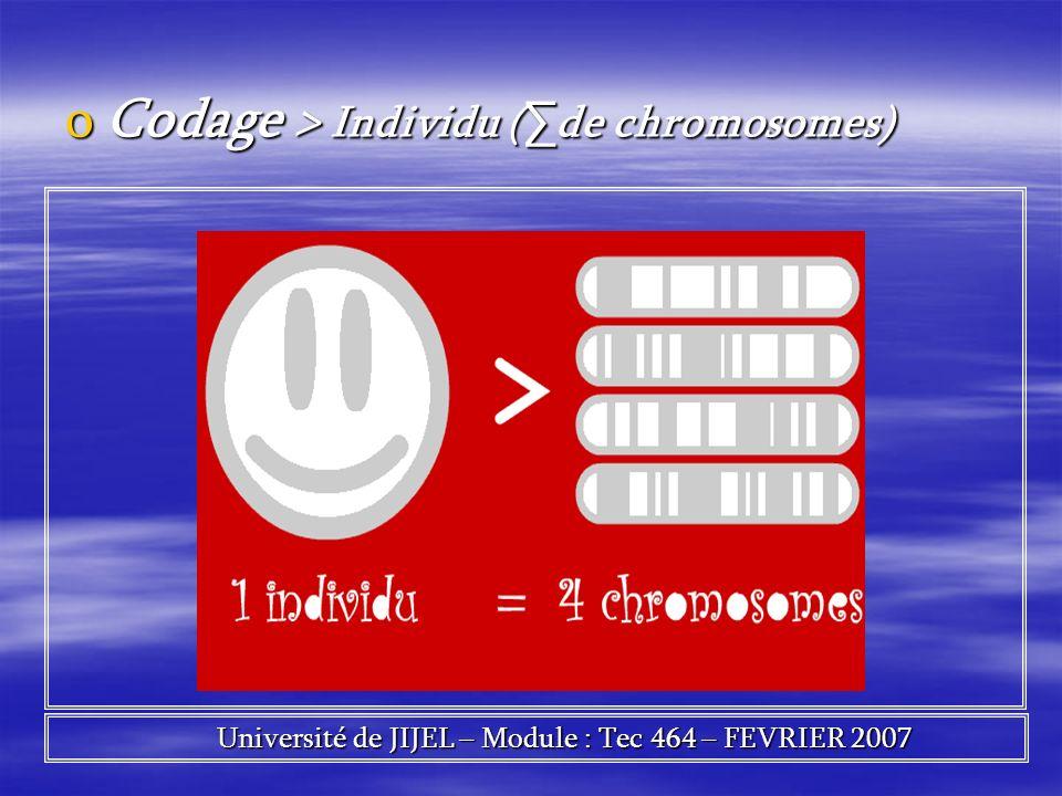 oCodage > Individu ( de chromosomes) Université de JIJEL – Module : Tec 464 – FEVRIER 2007 Université de JIJEL – Module : Tec 464 – FEVRIER 2007