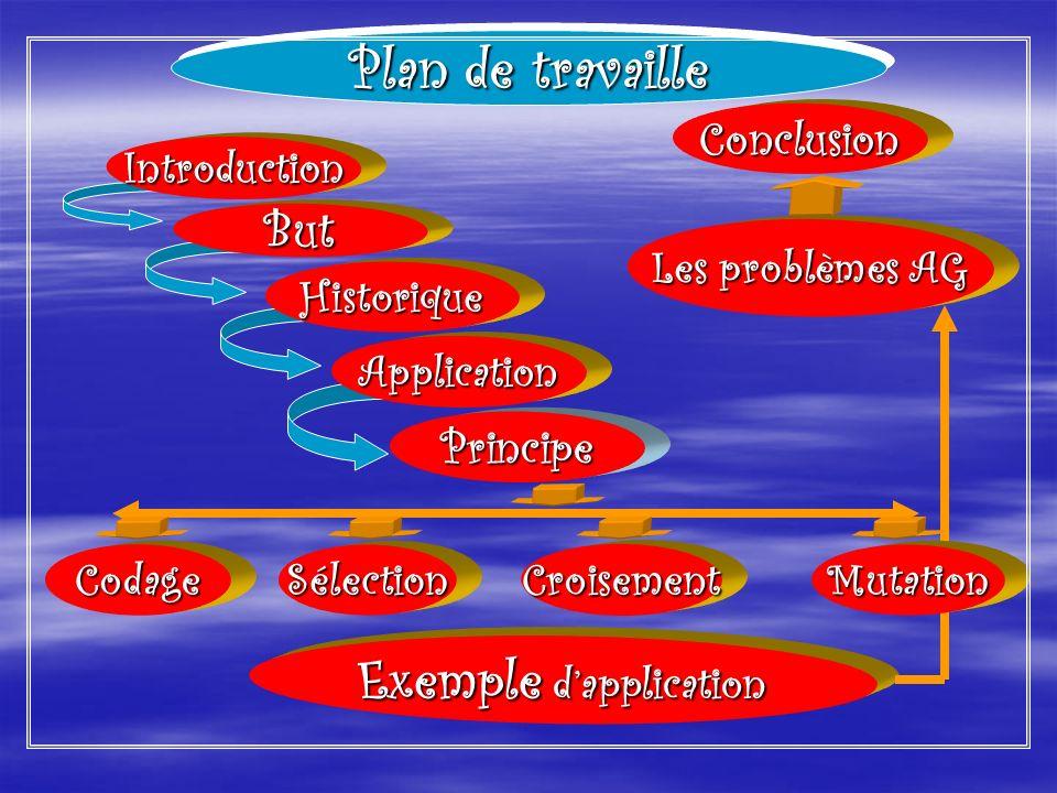 Les problèmes AG Exemple dapplication SélectionCroisementCodage Conclusion Principe Mutation Introduction But Historique Application Plan de travaille