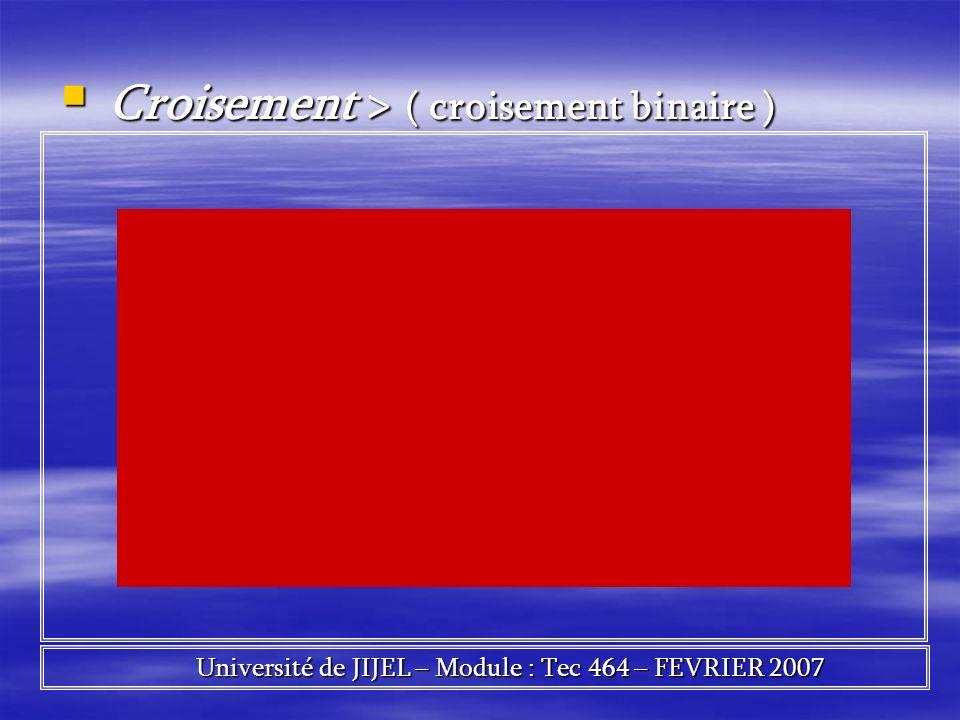 Croisement > ( croisement binaire ) Croisement > ( croisement binaire ) Université de JIJEL – Module : Tec 464 – FEVRIER 2007 Université de JIJEL – Mo