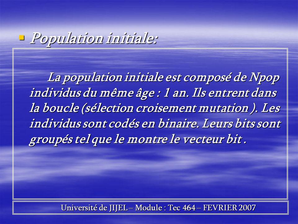 Population initiale: Population initiale: La population initiale est composé de Npop individus du même âge : 1 an. Ils entrent dans la boucle (sélecti