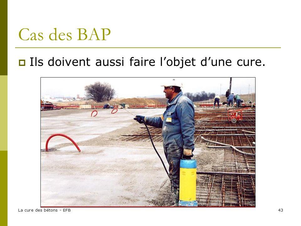 La cure des bétons - EFB43 Cas des BAP Ils doivent aussi faire lobjet dune cure.
