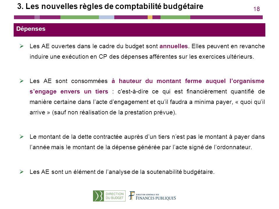 18 3. Les nouvelles règles de comptabilité budgétaire Les AE ouvertes dans le cadre du budget sont annuelles. Elles peuvent en revanche induire une ex