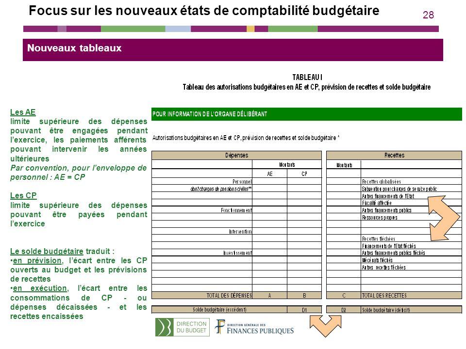 28 Les AE limite supérieure des dépenses pouvant être engagées pendant lexercice, les paiements afférents pouvant intervenir les années ultérieures Pa