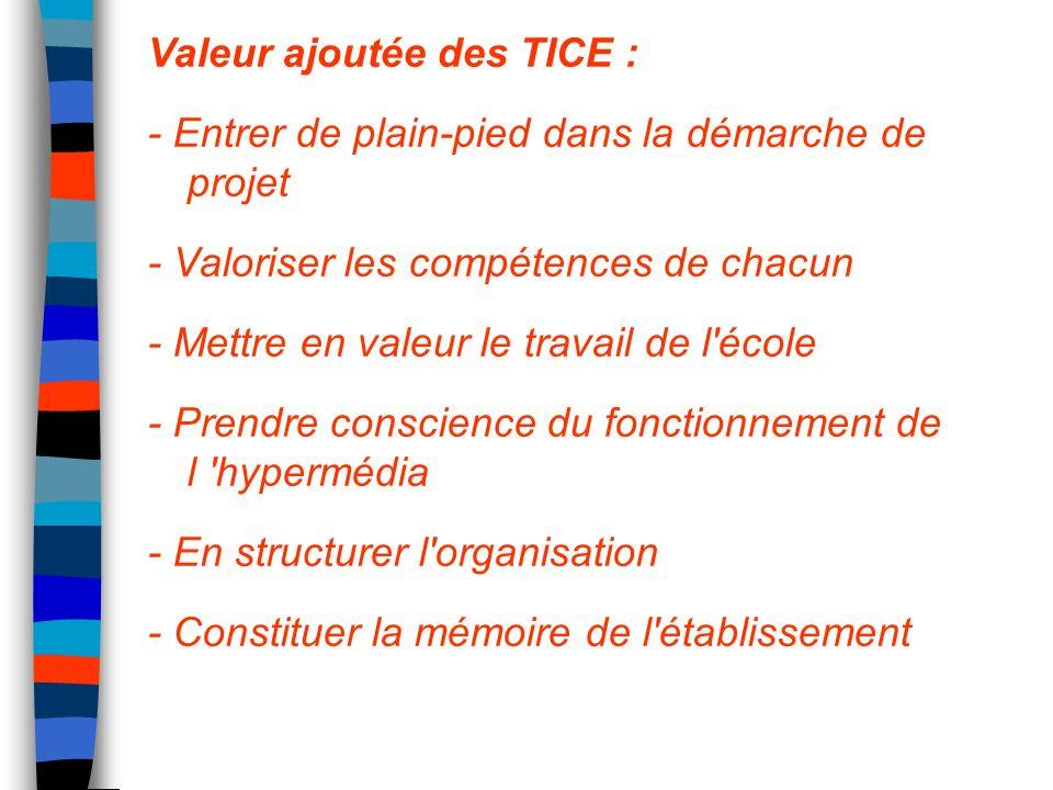 Valeur ajoutée des TICE : - Entrer de plain-pied dans la démarche de projet - Valoriser les compétences de chacun - Mettre en valeur le travail de l'é