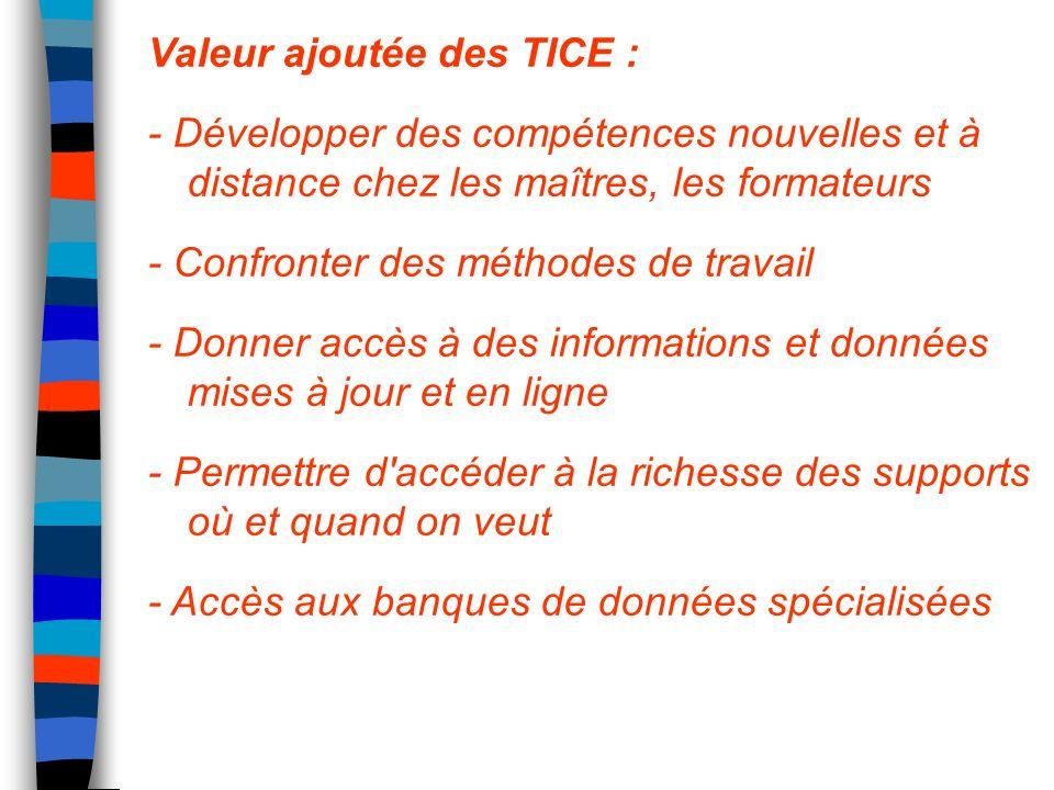 Valeur ajoutée des TICE : - Développer des compétences nouvelles et à distance chez les maîtres, les formateurs - Confronter des méthodes de travail -