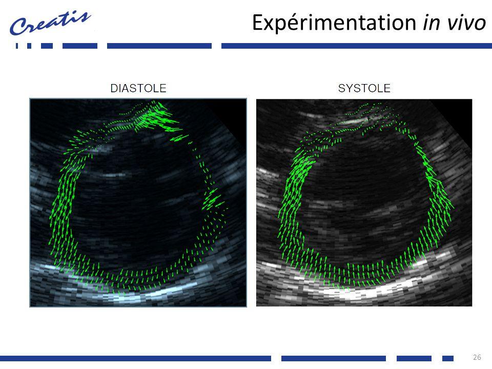 Expérimentation in vivo 26