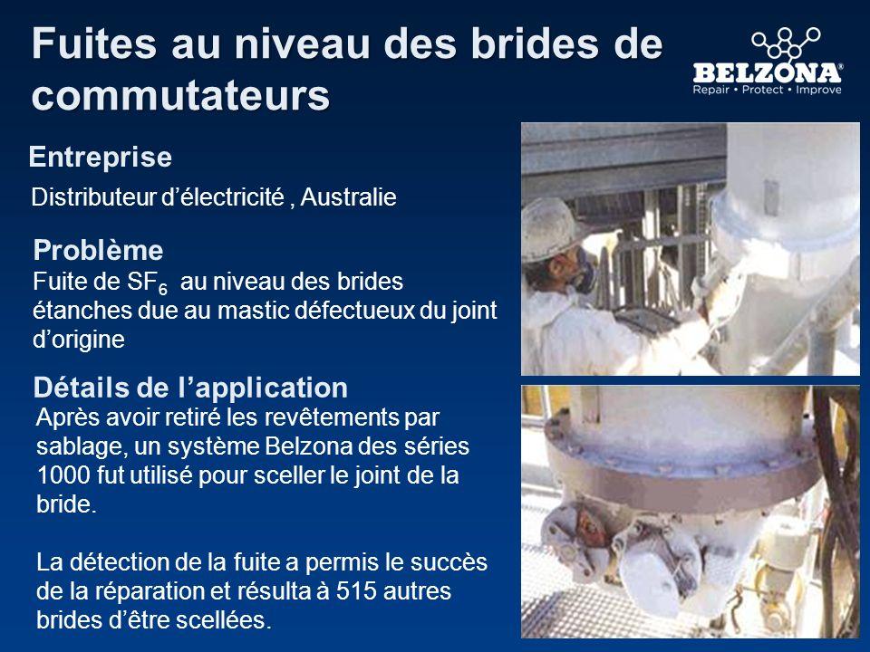 Entreprise Problème Détails de lapplication Fuites au niveau des brides de commutateurs Distributeur délectricité, Australie Fuite de SF 6 au niveau d