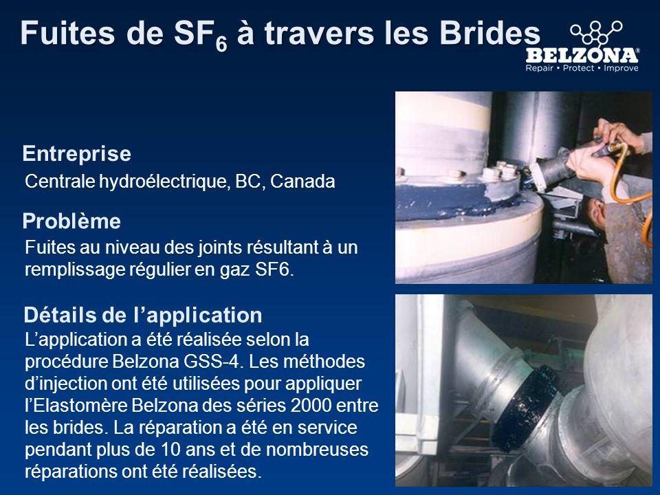 Entreprise Problème Détails de lapplication Fuites de SF 6 à travers les Brides Centrale hydroélectrique, BC, Canada Fuites au niveau des joints résul