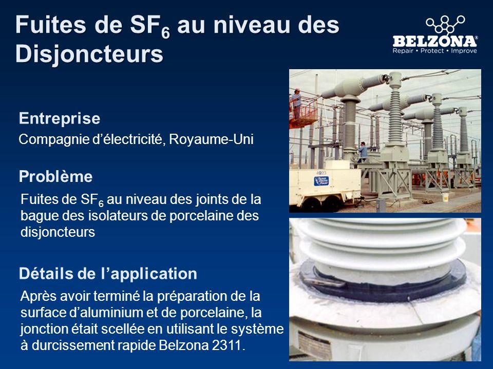 Entreprise Problème Détails de lapplication Fuites de SF 6 au niveau des Disjoncteurs Compagnie délectricité, Royaume-Uni Fuites de SF 6 au niveau des