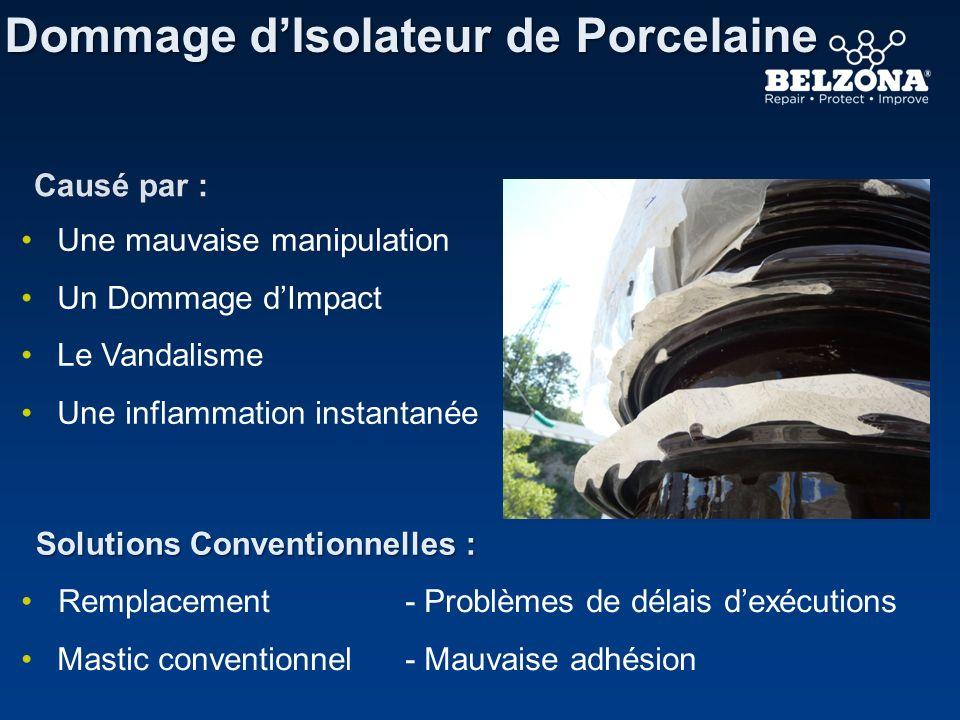 Dommage dIsolateur de Porcelaine Solutions Conventionnelles : Causé par : Une mauvaise manipulation Un Dommage dImpact Le Vandalisme Une inflammation