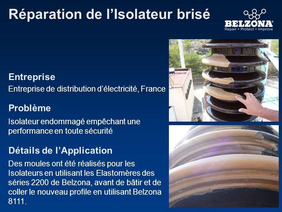 Entreprise Problème Détails de lApplication Réparation de lIsolateur brisé Entreprise de distribution délectricité, France Isolateur endommagé empêcha