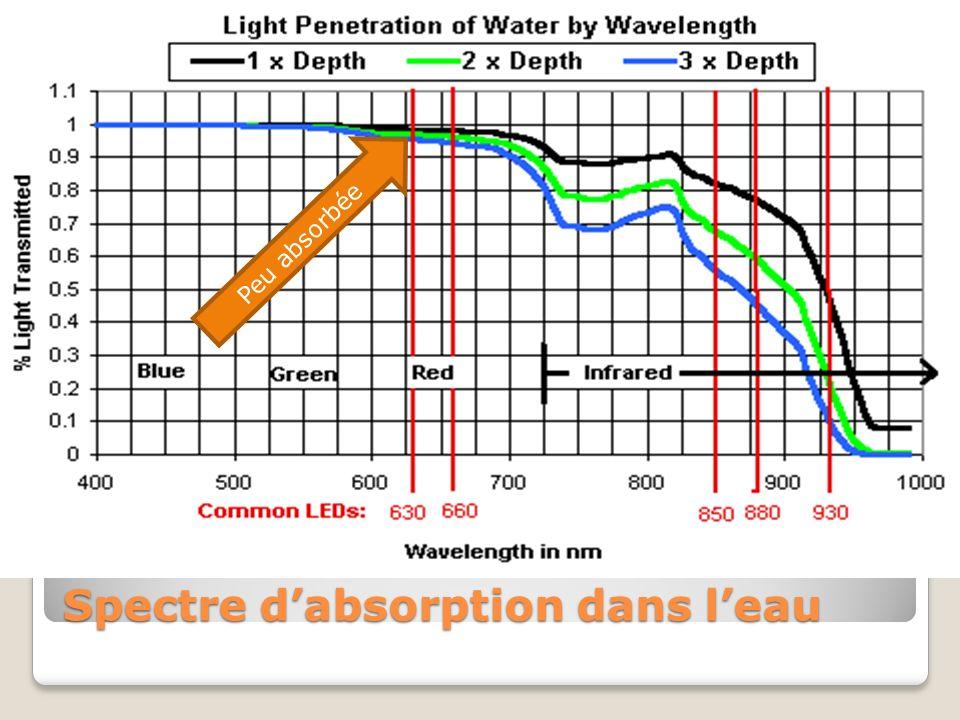 Courbe de Spectre dabsorption dans leau Peu absorbée
