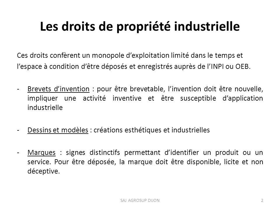 Les droits de propriété industrielle Ces droits confèrent un monopole dexploitation limité dans le temps et lespace à condition dêtre déposés et enregistrés auprès de lINPI ou OEB.