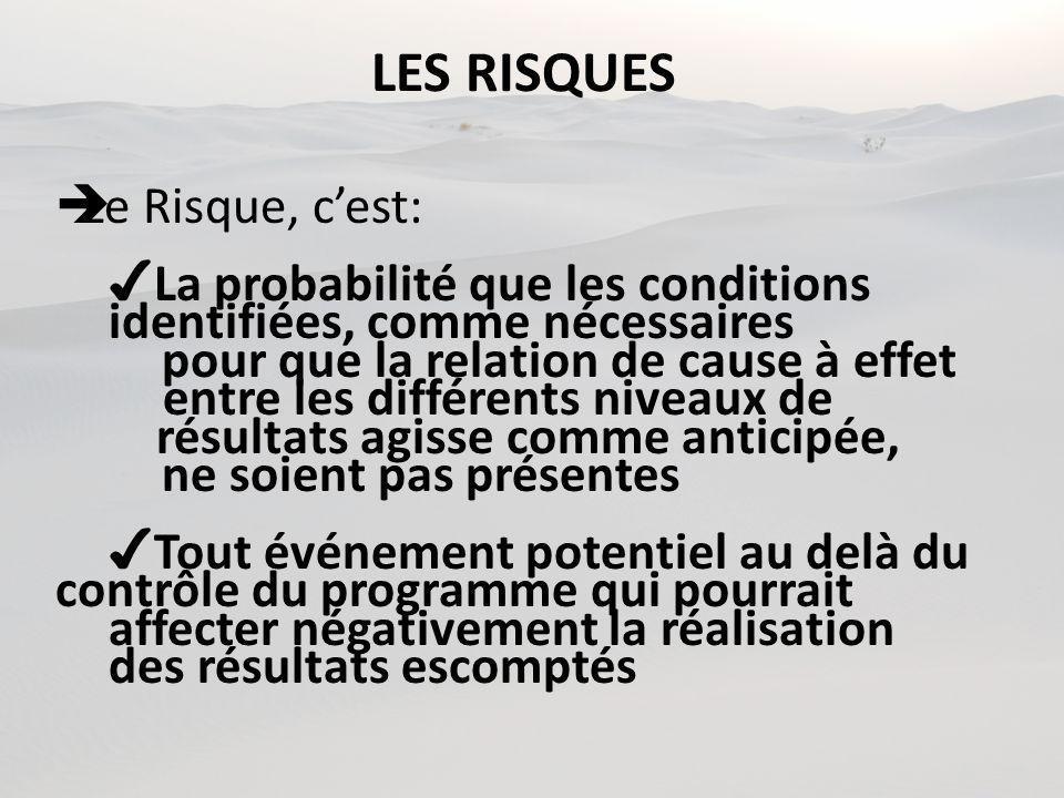 LES RISQUES Le Risque, cest: La probabilité que les conditions identifiées, comme nécessaires pour que la relation de cause à effet entre les différen