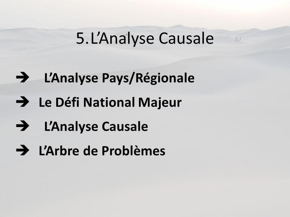 5.LAnalyse Causale LAnalyse Pays/Régionale Le Défi National Majeur LAnalyse Causale LArbre de Problèmes