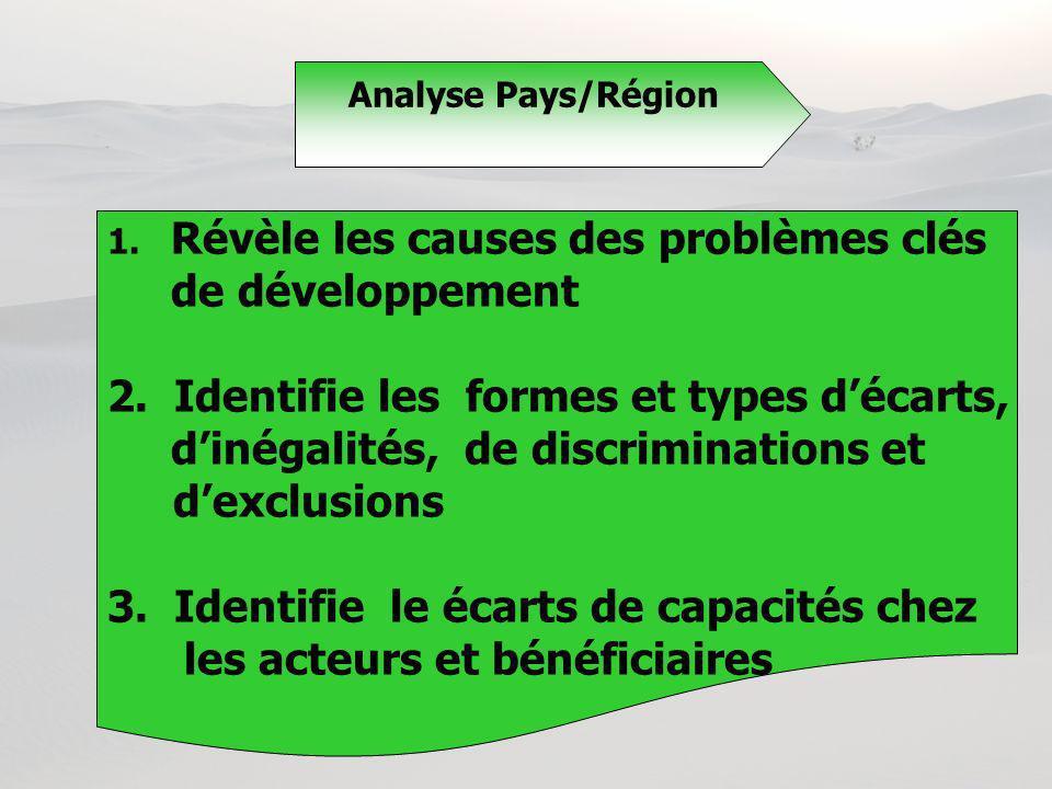 1. Révèle les causes des problèmes clés de développement 2. Identifie les formes et types décarts, dinégalités, de discriminations et dexclusions 3. I