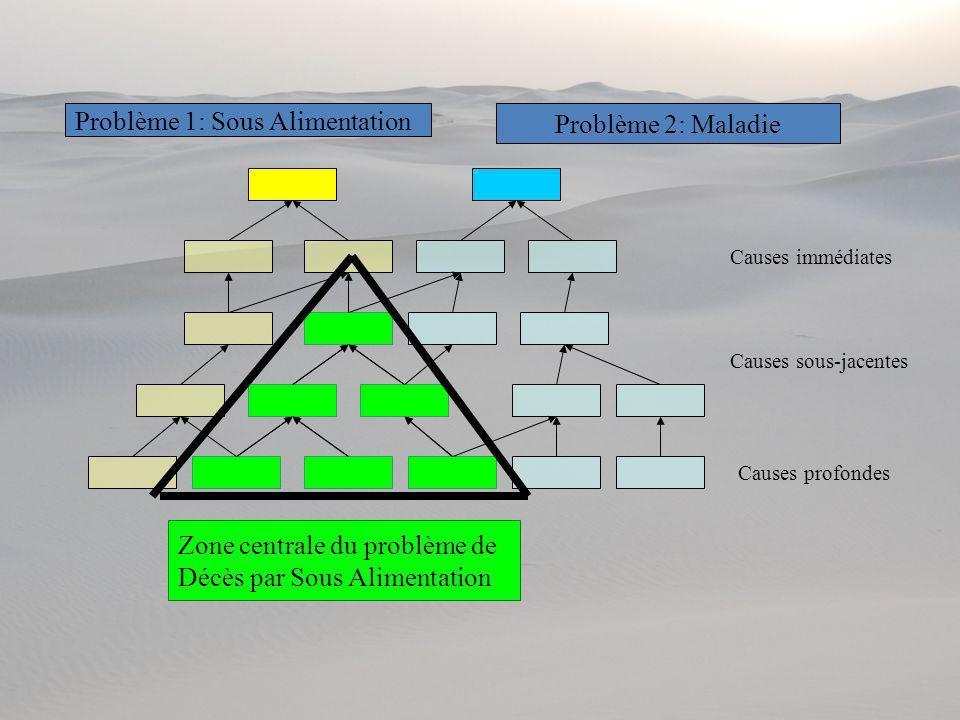 Problème 1: Sous Alimentation Problème 2: Maladie Causes immédiates Causes sous-jacentes Causes profondes Zone centrale du problème de Décès par Sous