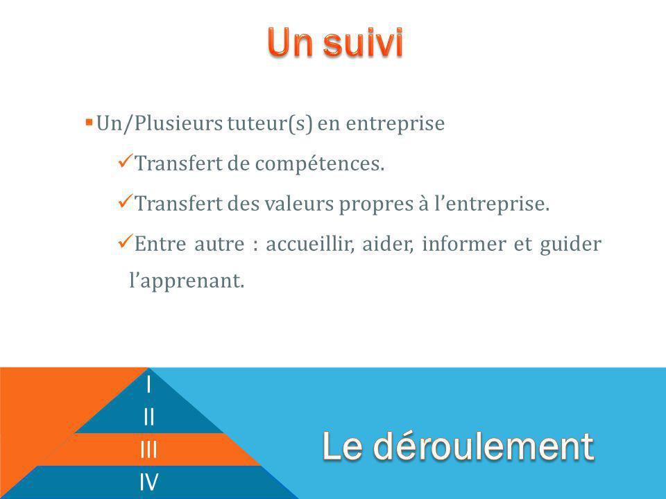 Un/Plusieurs tuteur(s) en entreprise Transfert de compétences.