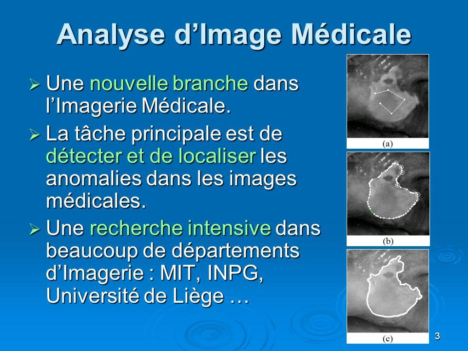 3 Analyse dImage Médicale Une nouvelle branche dans lImagerie Médicale. Une nouvelle branche dans lImagerie Médicale. La tâche principale est de détec